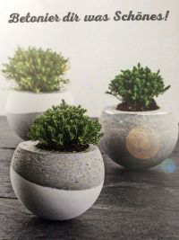 25+ best ideas about Concrete Pots on Pinterest | Concrete ...