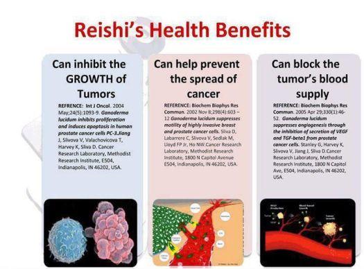 Benefits Of Reishi Mushroom Tea