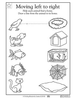 14 best images about Pre-K Left to Right Worksheets