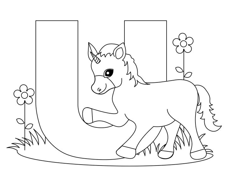 1797 best Colouring Pages images on Pinterest
