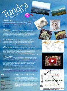 17 Best Ideas About Physical Geography On Pinterest