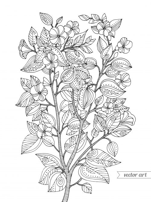 17 Best images about Advanced Nature Coloring Pages on