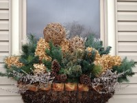 1000+ images about Winter container gardens on Pinterest