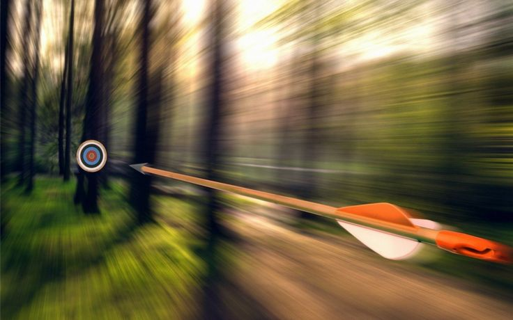 bow and arrow wallpaper  Forest Arrow Target wallpapers