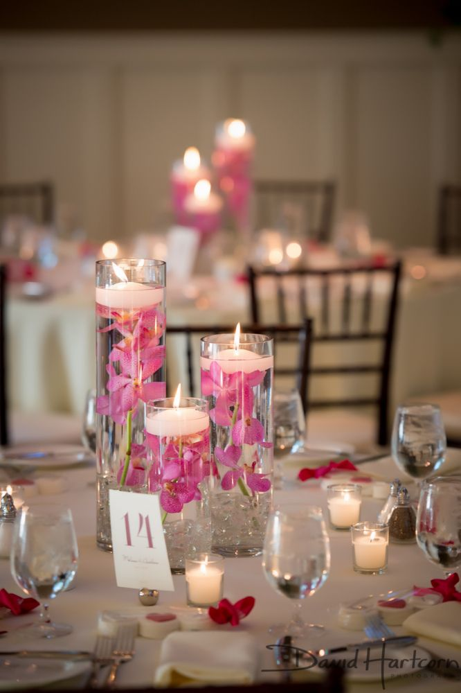 Pink Orchid Centerpieces Glass Cylinder Centerpieces