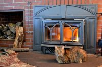43 best Hearth Cats images on Pinterest