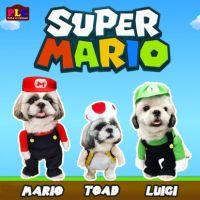 Super Mario Bros. Dog Costume Mario, Toad, Luigi AVAILABLE ...