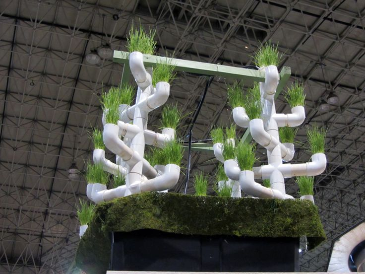 13 Best Images About Pvc Garden On Pinterest Gardens Pvc Pipes
