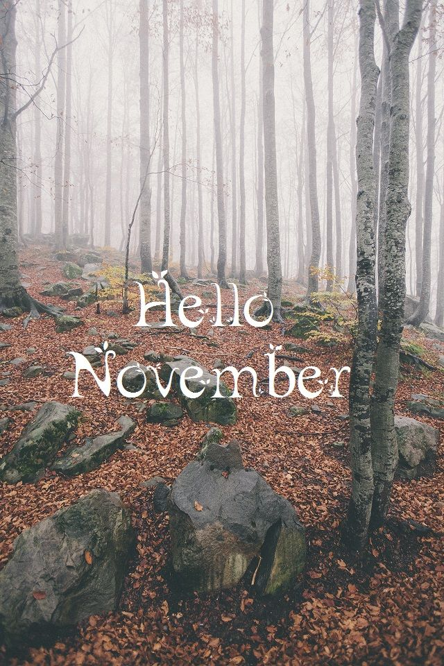 Falling Leaves Wallpaper For Iphone 25 Best Ideas About Hello November On Pinterest