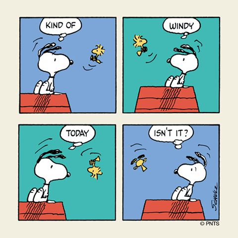 Image result for snoopy and autumn