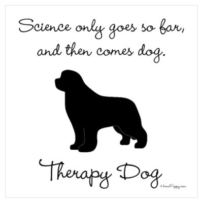 30 best Therapy Dogs images on Pinterest