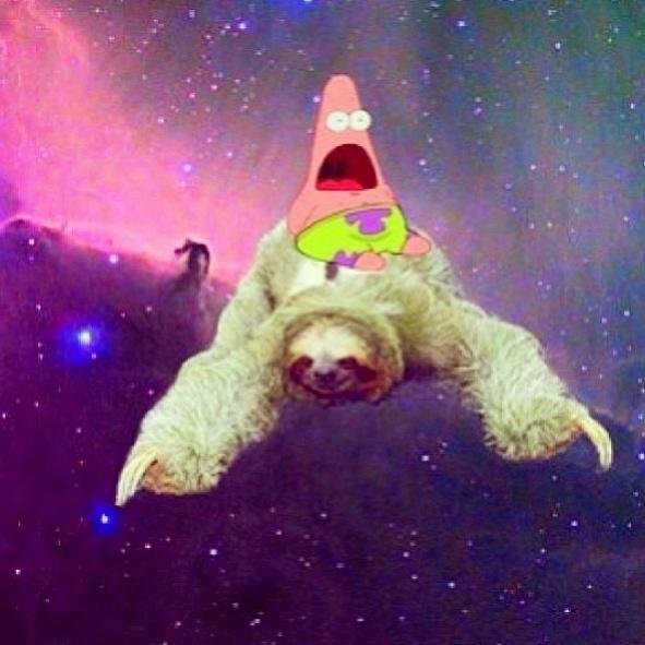 Cute Llamacorn Wallpaper I Love Sloths And Surprise Patrick Surprised Patrick
