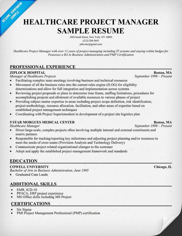 Healthcare Project Manager Resume Example