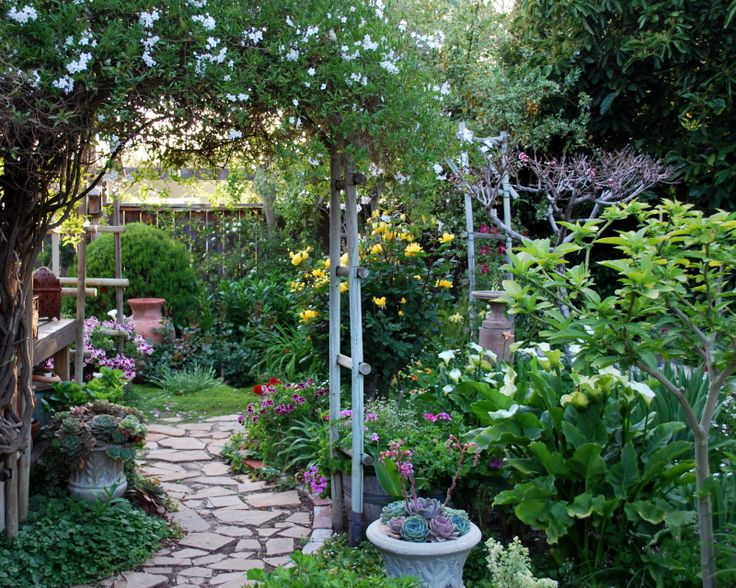 25 Best Ideas About California Garden On Pinterest Drought