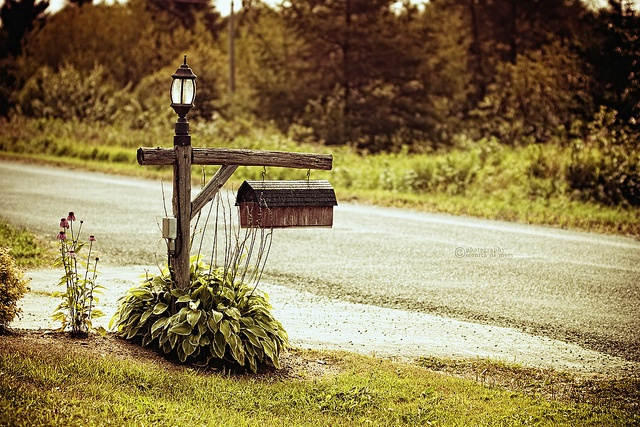 60 Best Images About Mailboxes On Pinterest Fall Mailbox