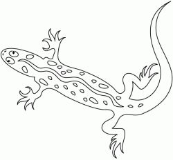 1000+ images about Preschool Theme: Reptiles on Pinterest