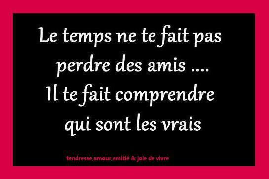 French Quotes About Friendship Fascinating Quote In French About Friendship Picture