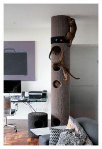 hicat indoor climbing pole | z cats | Pinterest | Cat ...