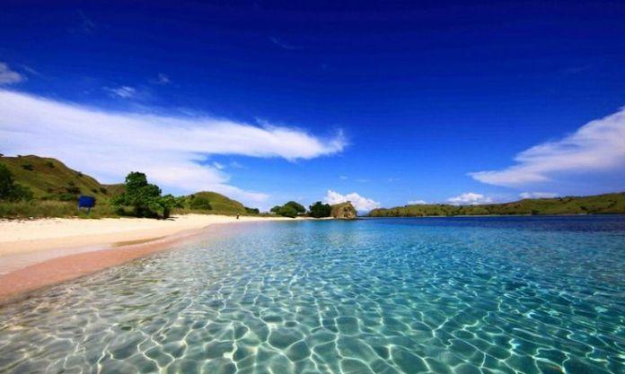 Pink beach - Lombok | Beautiful Indonesia | Pinterest ...