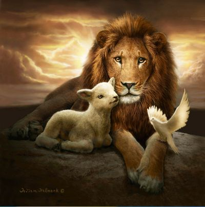 1000 Ideas About Lion Of Judah On Pinterest Lion And