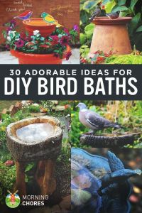 25+ Best Ideas about Bird Baths on Pinterest | Diy bird ...