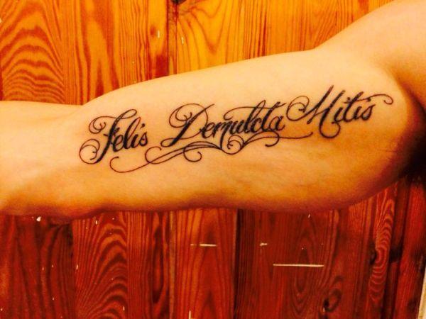 'felis demulcta mitis' latin script