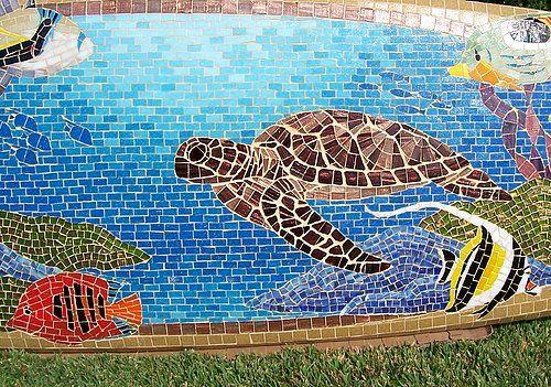 Kahaluu Detail Turtle Close Up Of The Honu Hawaiian