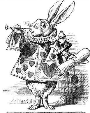 25+ best ideas about Alice in wonderland rabbit on