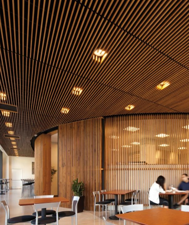 Edge Wood Ceiling Structure, Filtering Ceiling Above, With