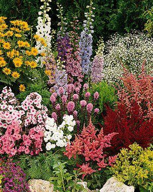 25 Best Ideas About Flower Garden Plans On Pinterest Flower