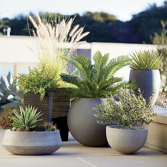 25 Best Ideas About Large Ceramic Planters On Pinterest Large