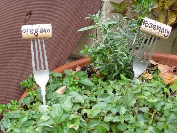 100 Ideas To Try About Garden Craft Gardens Crafts And Nyc