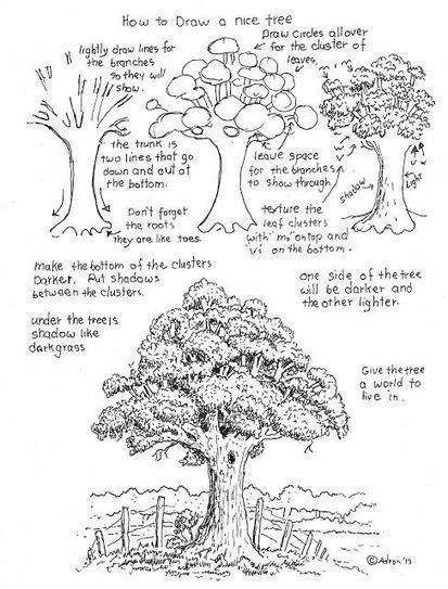 How to draw a nice tree worksheet is a satisfying project