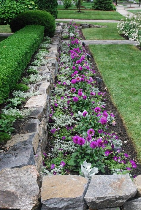 Hedge Rock Wall Flower Bed For The Home Pinterest