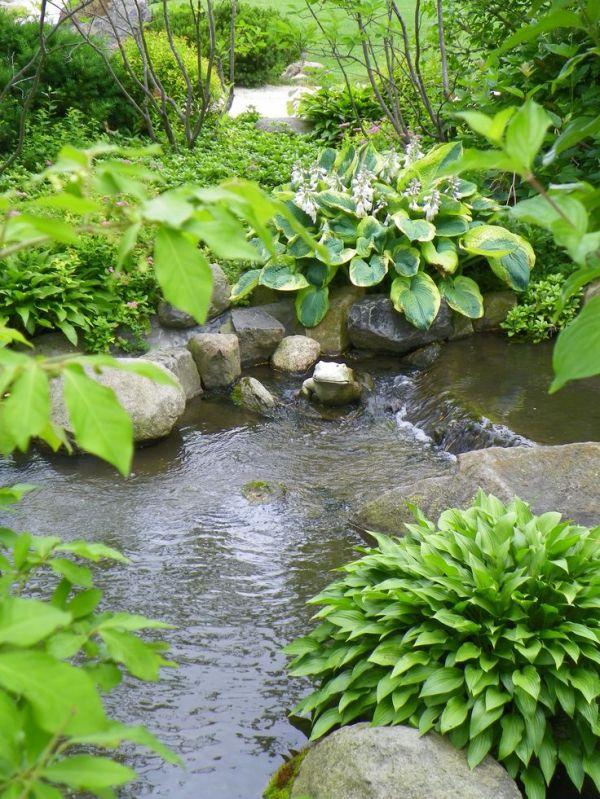 anderson japanese gardens in rockford