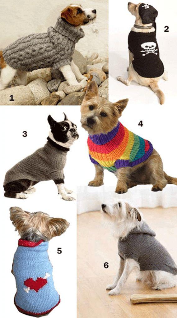 Crochet Dog Sweater Pattern Chihuahua - The Best Dog 2018