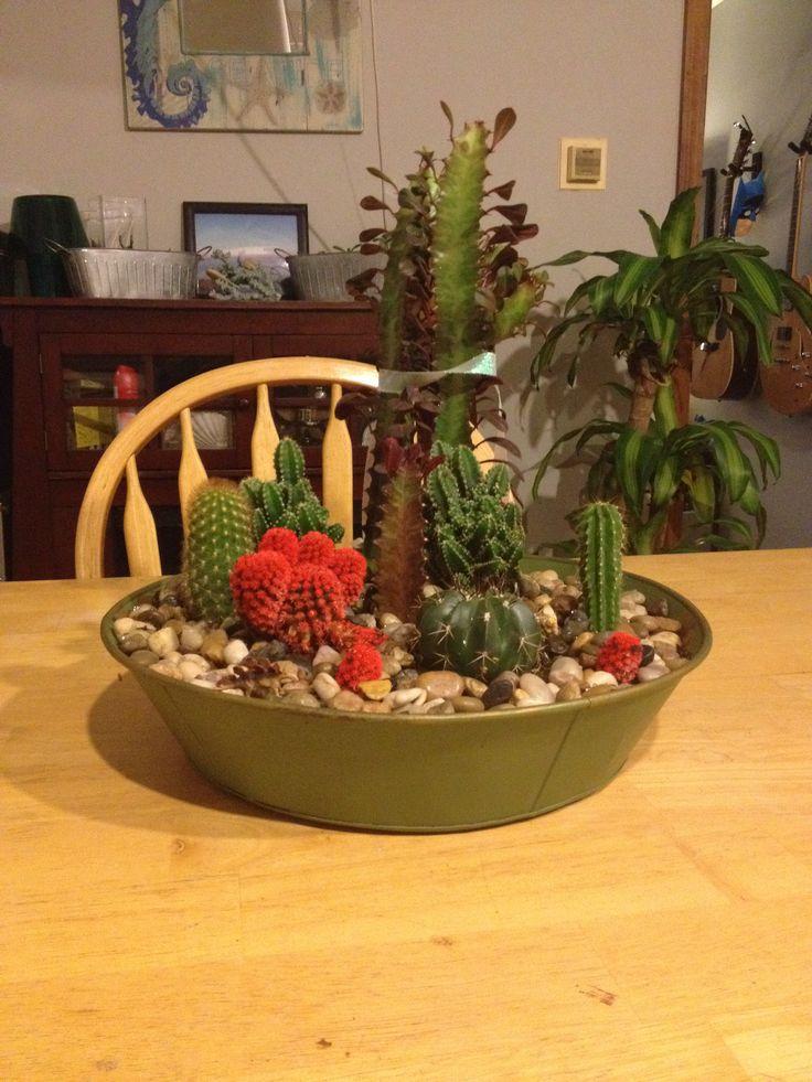 30 Best Images About Gardening On Pinterest Indoor Indoor