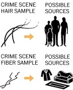 1000+ images about Forensic stuff on Pinterest