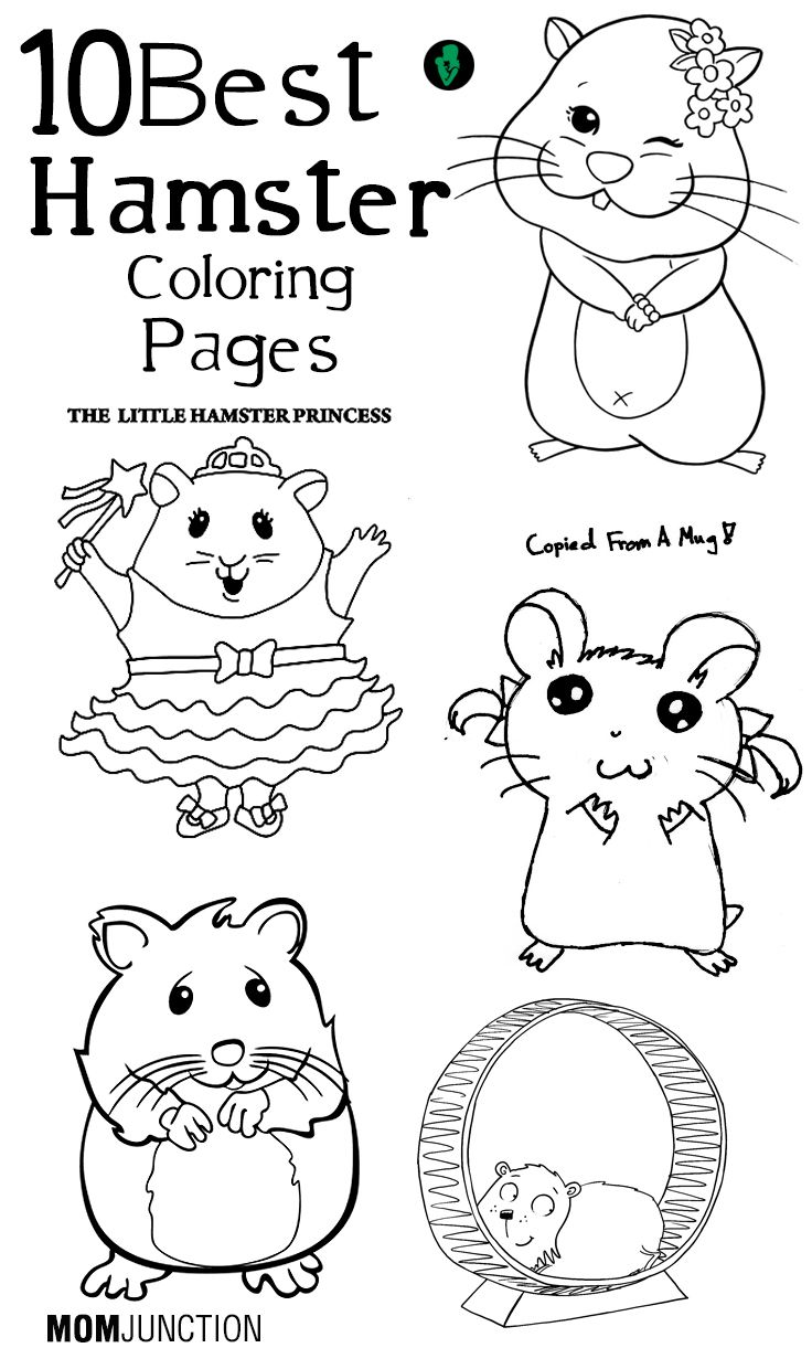 Top 25 Free printable Hamster Coloring Pages Online