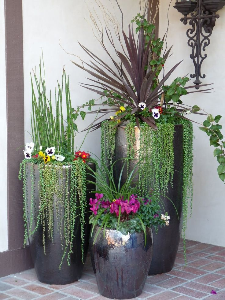 25 Best Ideas About Potted Plants Patio On Pinterest Outdoor