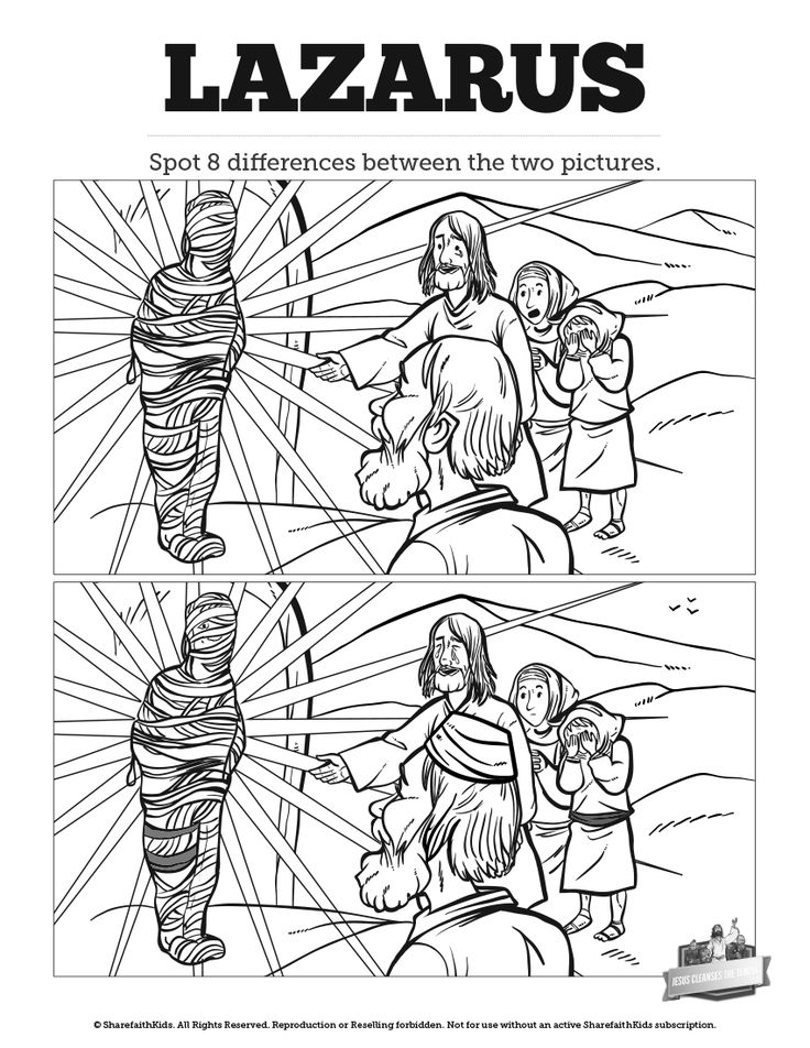 243 best images about Bible: Jesus and His Miracles on