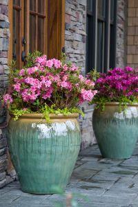 25+ best ideas about Large flower pots on Pinterest ...
