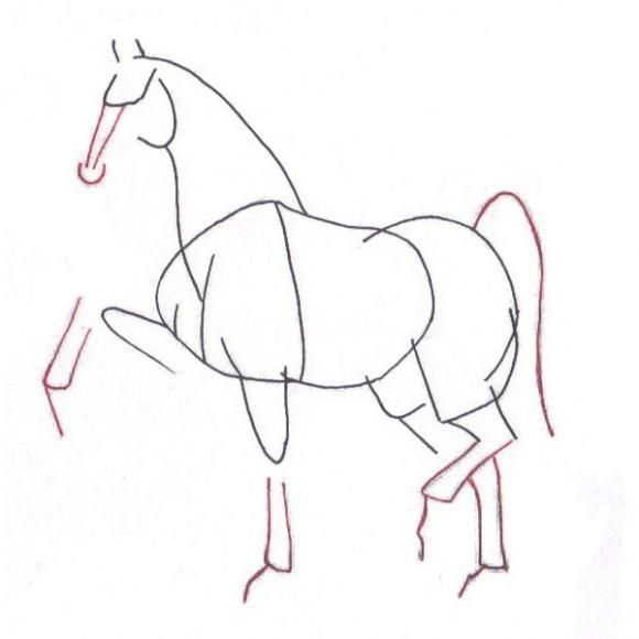 1000+ images about simple drawing lessons for k-5 on