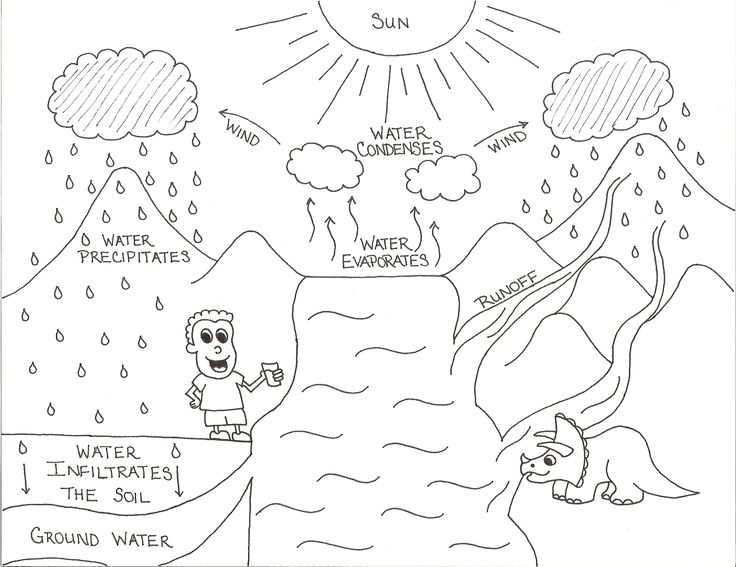 Worksheets for kindergarten, Water cycle and Worksheets on