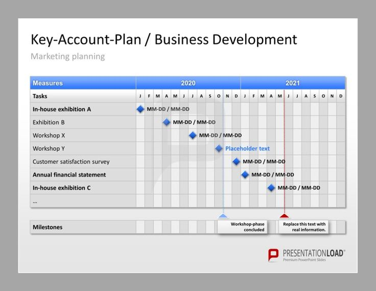 Account Plan Template Ppt | Best | Resume | Samples