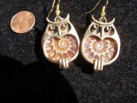 17 Best images about Ammonite jewelry on Pinterest ...