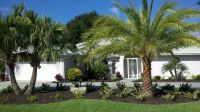 17 Best ideas about Palm Trees Landscaping on Pinterest ...