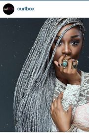 grey silver box braids hairspiration