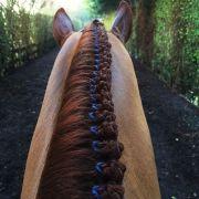 beautiful horse hairstyles cowboy