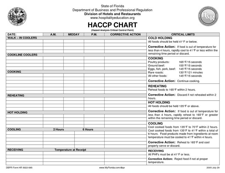 Haccp Plan Template Uk | cover letter sample for job